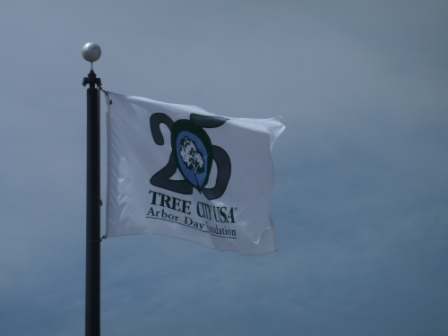 25 year flag